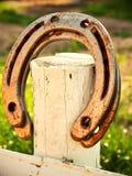 Ferro di cavallo fortunato Immagine Stock Libera da Diritti