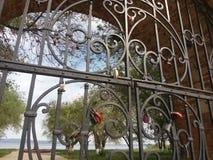 Ferro, fechamento, corrente, cadeado, fechado, metálico, segurança, oxidada, porta, teste padrão, velho, retro, metal, antiguidad fotos de stock royalty free