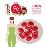 Ferro O efeito dos minerais na saúde humana Uma dieta saudável e um estilo de vida saudável ilustração royalty free