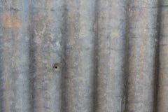 Ferro ondulato del giardino Fotografia Stock