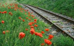 Ferrocarril Fotografía de archivo libre de regalías