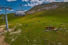 Ferrocarril aéreo aéreo alto en las montañas del Cáucaso con plai de la hierba Imagen de archivo