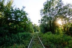 Ferrocarril abandonado en el bosque Foto de archivo
