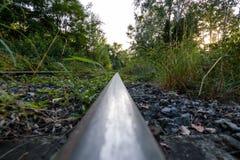 Ferrocarril abandonado en el bosque Fotos de archivo libres de regalías