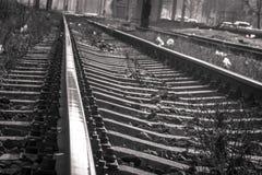 Ferrocarril blanco y negro Imagen de archivo libre de regalías