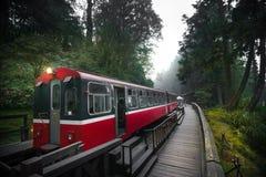 Ferrocarril del tren del bosque de Alishan Imágenes de archivo libres de regalías