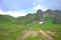 Ferrocarril del vapor en las montan@as suizas. Imagenes de archivo