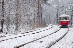 Ferrocarril en bosque Foto de archivo