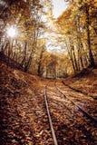 Ferrocarril en bosque colorido en otoño el día soleado imágenes de archivo libres de regalías