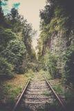 Ferrocarril místico viejo en un bosque Foto de archivo libre de regalías