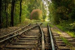 Ferrocarril sin fin en el bosque Fotografía de archivo libre de regalías