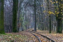 Ferrocarril a un sueño Imagen de archivo libre de regalías