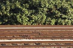 Ferrocarril y arbustos Fotos de archivo libres de regalías