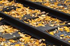 Ferrocarril viejo derramado con las hojas caidas amarillas Foto de archivo libre de regalías