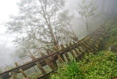 Ferrocarril viejo en el bosque Imagenes de archivo