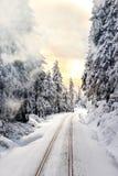 Ferrocarriles en el bosque nevoso en la puesta del sol foto de archivo