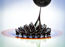 Ferrofluid flow Royalty Free Stock Image