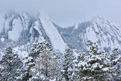 Ferros de passar roupa do inverno reunidos com neve imagem de stock