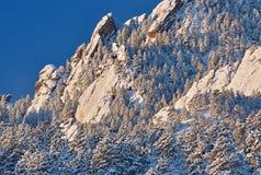 Ferros de passar roupa no pico do urso Foto de Stock Royalty Free