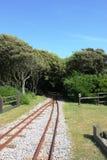 Ferrovia através da floresta Foto de Stock