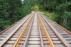 Ferrovia attraverso la foresta Immagini Stock Libere da Diritti