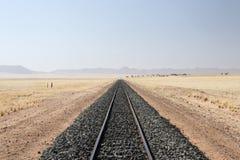 Ferrovia del deserto Immagini Stock Libere da Diritti