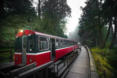Ferrovia del treno della foresta di Alishan Immagini Stock Libere da Diritti
