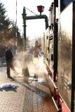 Ferrovia del vapore - choo-choo, Sassonia, Germania Fotografia Stock Libera da Diritti