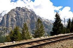 Ferrovia della montagna, alpi svizzere Immagini Stock Libere da Diritti