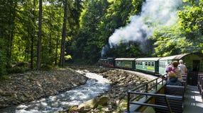 Ferrovia della valle di Weisseritz Giro del treno a vapore La Sassonia, Germania fotografia stock libera da diritti