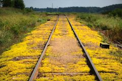 Ferrovia di autunno Fotografia Stock
