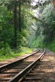 Ferrovia in legno Fotografie Stock Libere da Diritti