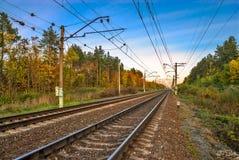 Ferrovia nella foresta di autunno Immagine Stock