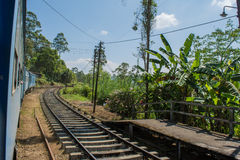 Ferrovia nello Sri Lanka Immagine Stock