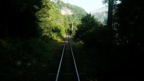 Ferrovia a scartamento ridotto nelle montagne, rotaie nella foresta, movimento lento archivi video