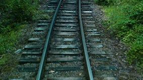 Ferrovia a scartamento ridotto, rotaie e traversine nella foresta, movimento lento video d archivio