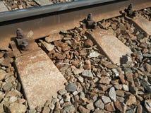 Ferrovia Vicino alle rotaie si trova una sigaretta immagini stock libere da diritti