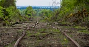 Ferrovias em um pântano em ireland Foto de Stock Royalty Free