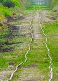 Ferrovias em um pântano em ireland Imagem de Stock Royalty Free