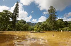 Ferruginous hot water spring in Sao Miguel, Azores. Portugal royalty free stock image