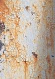 Ferruginous texture Stock Images