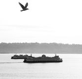 Ferry crossing Stock Images