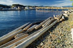 Ferry harbour. Harbour live in a small ferry harbour on quadra island at the pacific coast in canada Royalty Free Stock Image