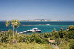 Ferry in an island. Ferry terminal on a remote island. Auckland, New Zealand royalty free stock photo