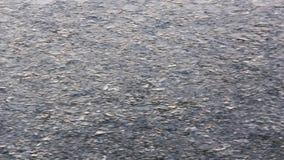 Ferry a maneira de estrada das ondas e do gelo na superfície do mar após o navio video estoque