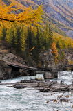 Ferry through the mountain river. The Russian Federation. Western Siberia. Mountain Altai Royalty Free Stock Photo