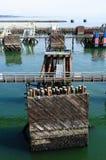 Ferry port stock photos