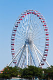 Ferrys Wheels in Navy Pier Chicago Royalty Free Stock Photos