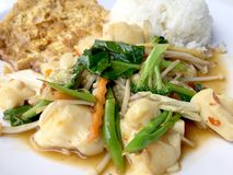 Fertań warzywa z Tofu w chińskim stylu z sosu kumberlandem i tajlandzkim stylowym omlecie z ryż w bielu talerzu na tle Vegetari zdjęcie royalty free