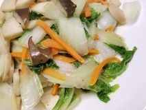 Fertania Smażący Mieszani warzywa obrazy stock